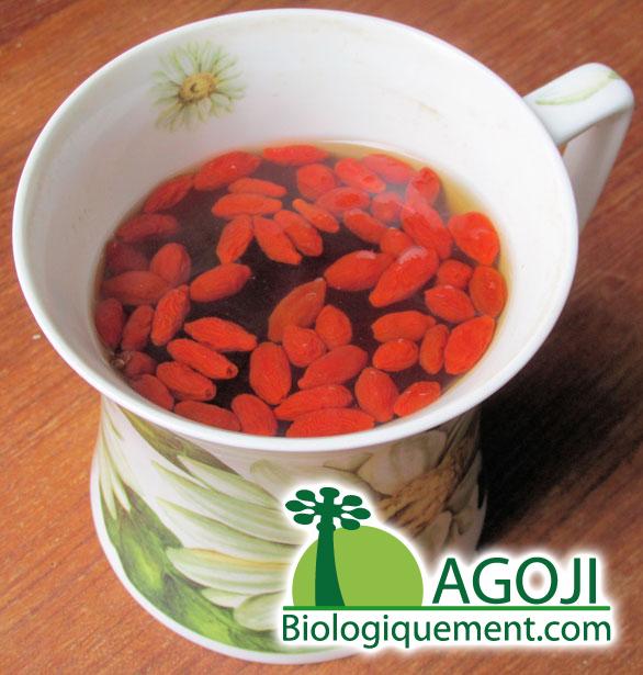 comment consommer les baies de goji sechees